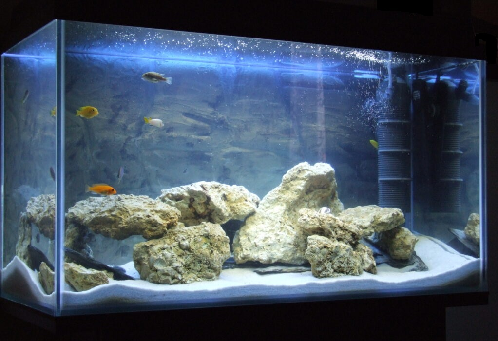 akwaria optiwhite, akwarium optiwhite, optiwhite